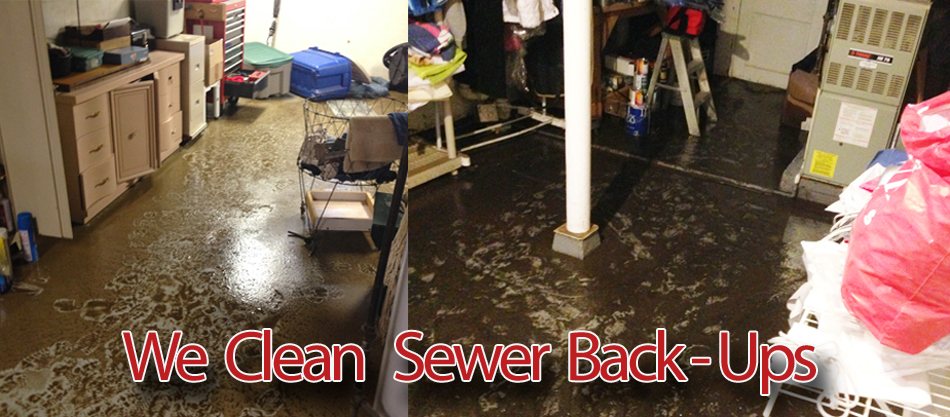 sewer back up basement clean up